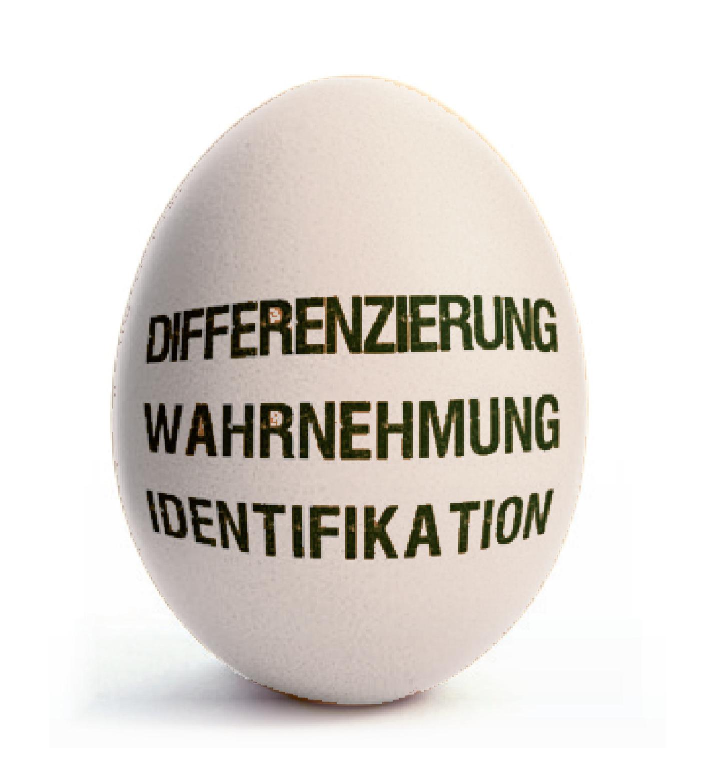 Ei_Differenzierung_Wahrnehmung_Identifikation-02-02.png